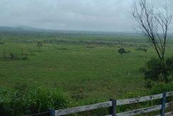 Fazenda – Venda – CRT/PA – 13.49