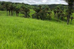 Fazenda – Venda – CRT/MG 3.575